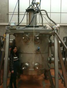 Dr. Juerong(Nicole) Li at the HMFL